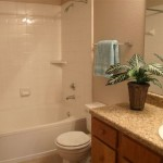 Ascension Point Condominiums Apartment Bathroom