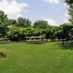 Ashford Park on Fielder Apartment Park