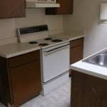 Pecan Square Apartment Kitchen