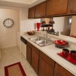 Woodcreek Apartment Kitchen