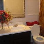 Meadow Creek Apartment Toilet